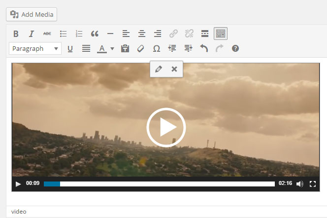 screenshot showing the video embed in edit screen